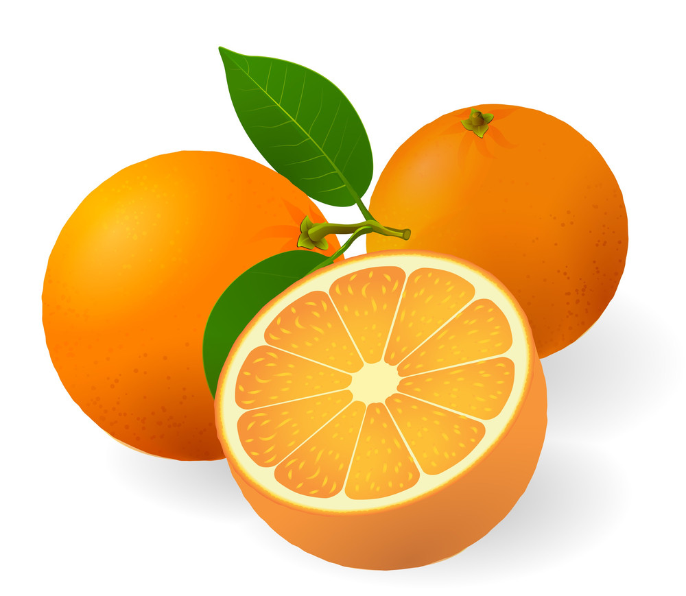 Ripe Oranges With Fresh Green Leafs. Vector.
