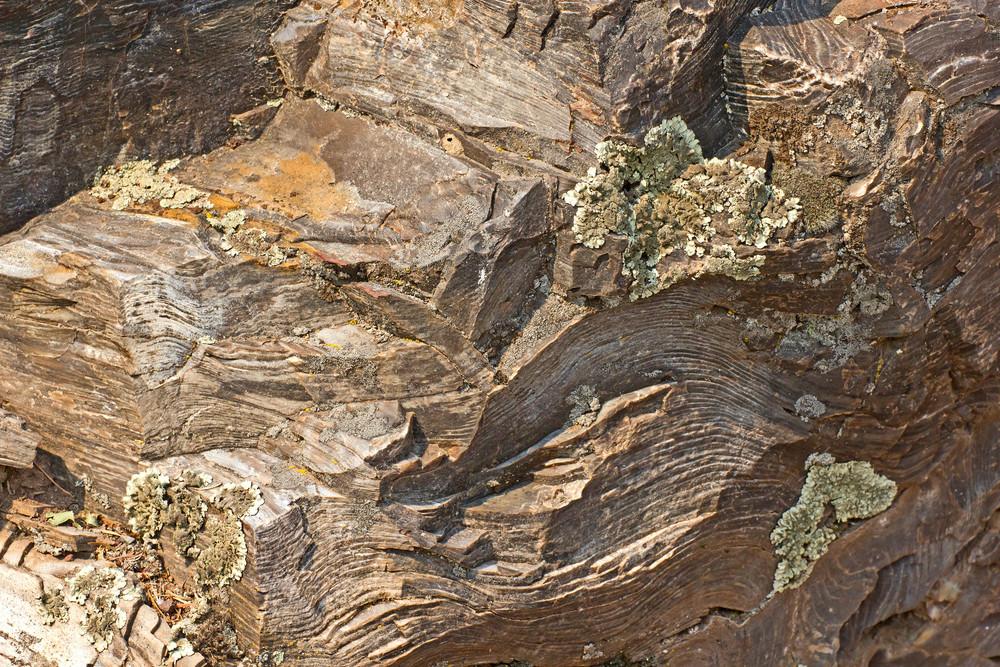 Rock Texture 5
