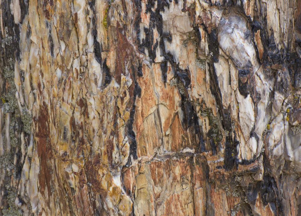 Rock Texture 9