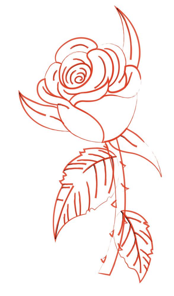 Rose Flower Sketching