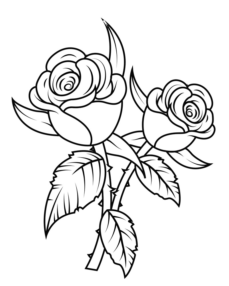 Laurel Wreaths Vector 28178351 further Floral Corner Vector Element Bd4ln42nxuwj6gmmf5d in addition Royalty Free Stock Photography Mr Simple Swot Analysis Man Action User Can Change Man S Color Remove Alphabet Face Image40626457 as well Rose Flowers Clipart S7bodypqubj6grzgkd likewise Vector Clouds Svg. on infographic vector graphics