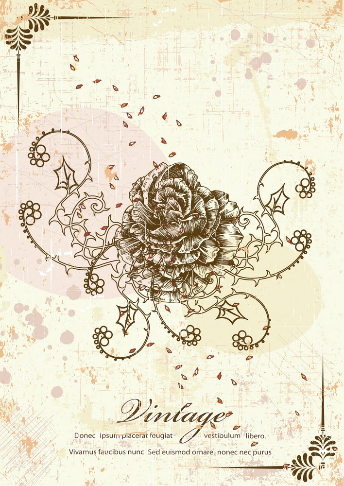 Rose With Grunge Vector Illustration