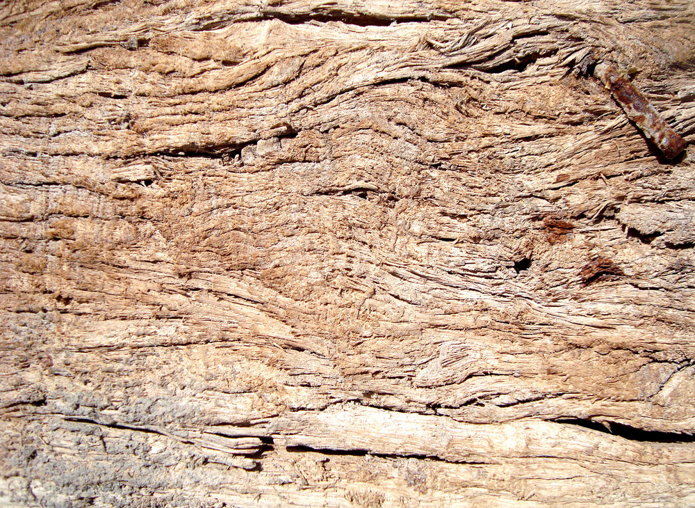 Rough_wood