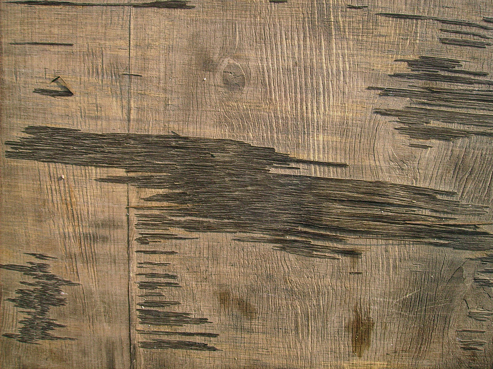 Rough_wood_texture