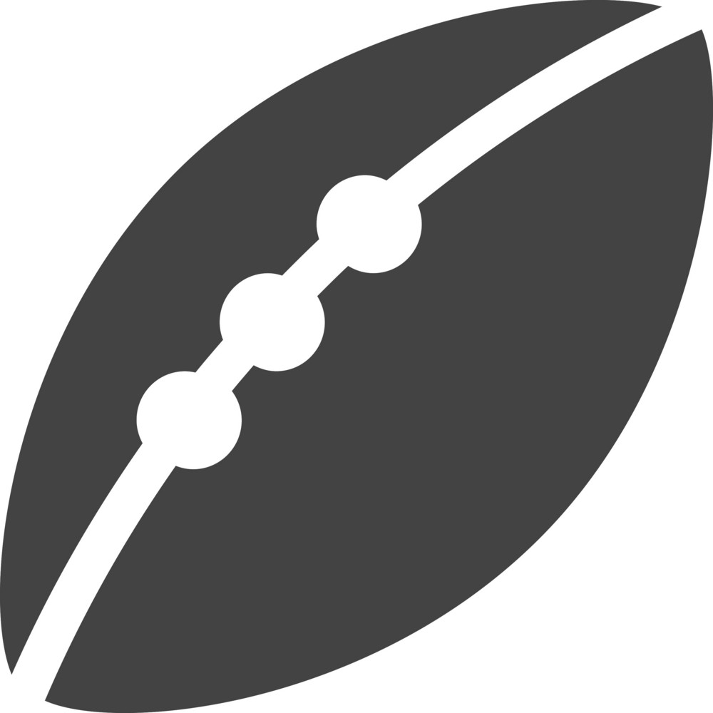 Rugby Football Glyph Icon