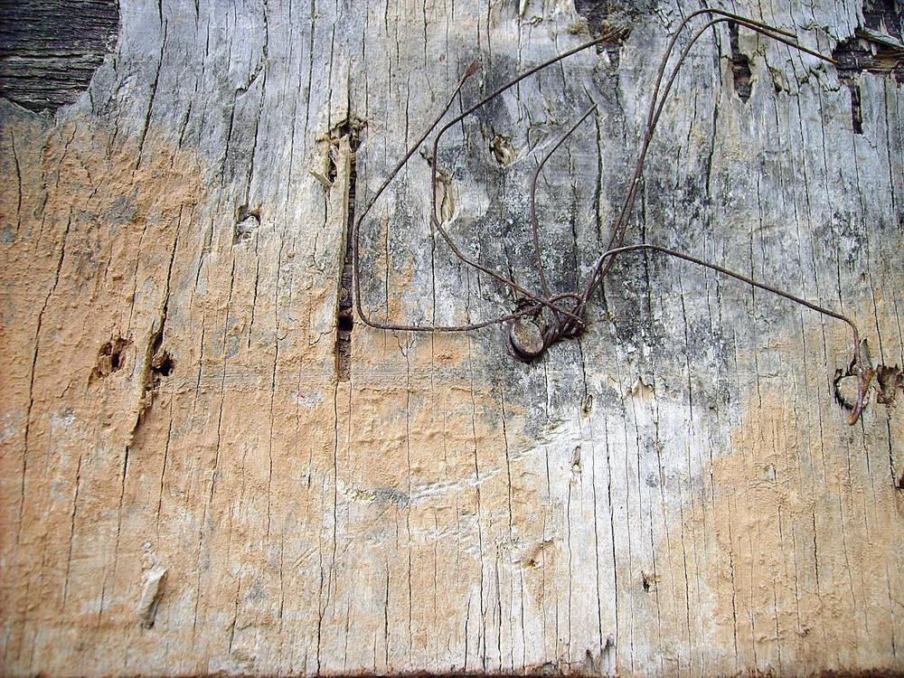 Ruins_wood_texture