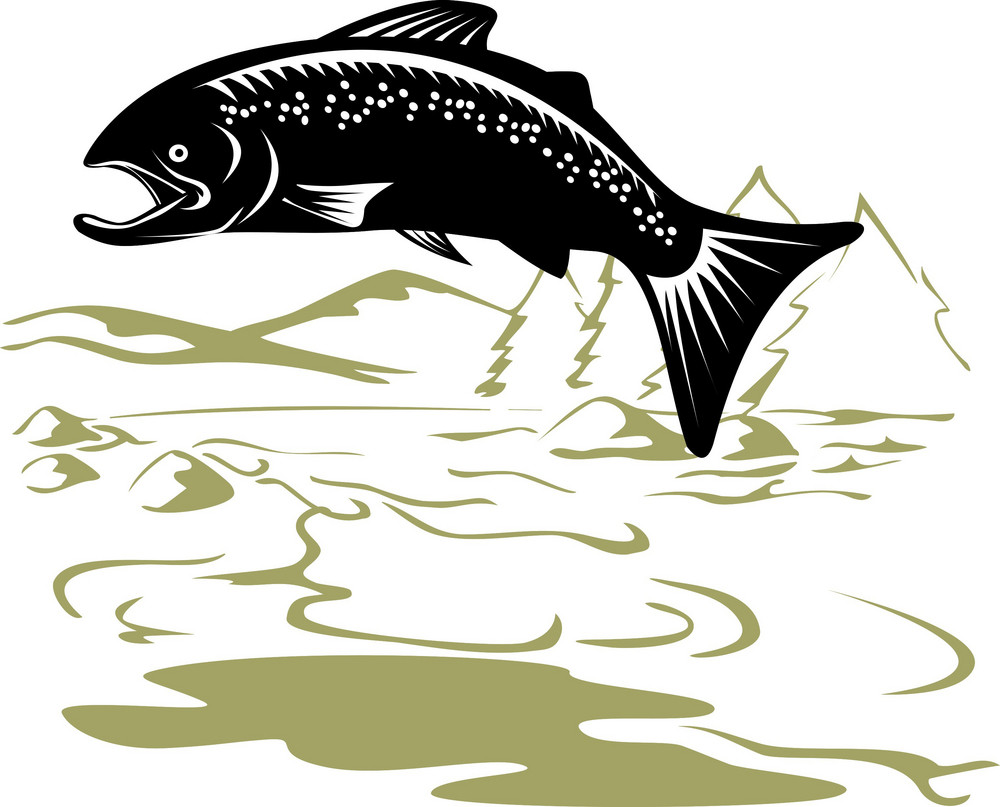 Salmon Fish Jumping Retro
