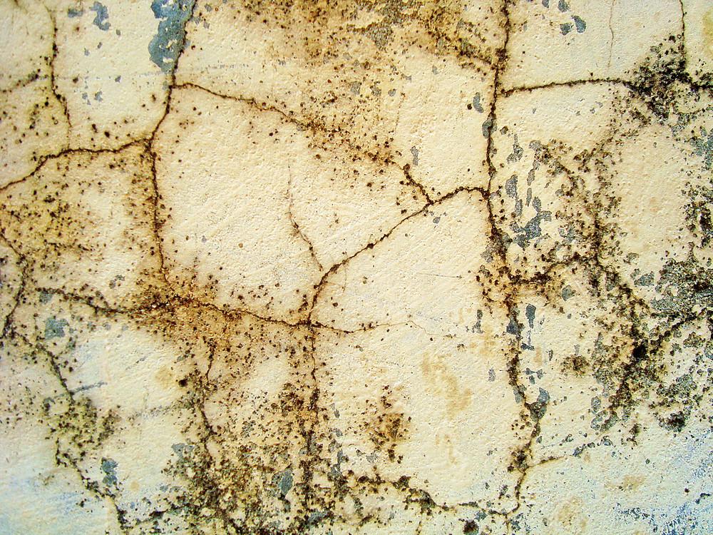 Scratchy_texture