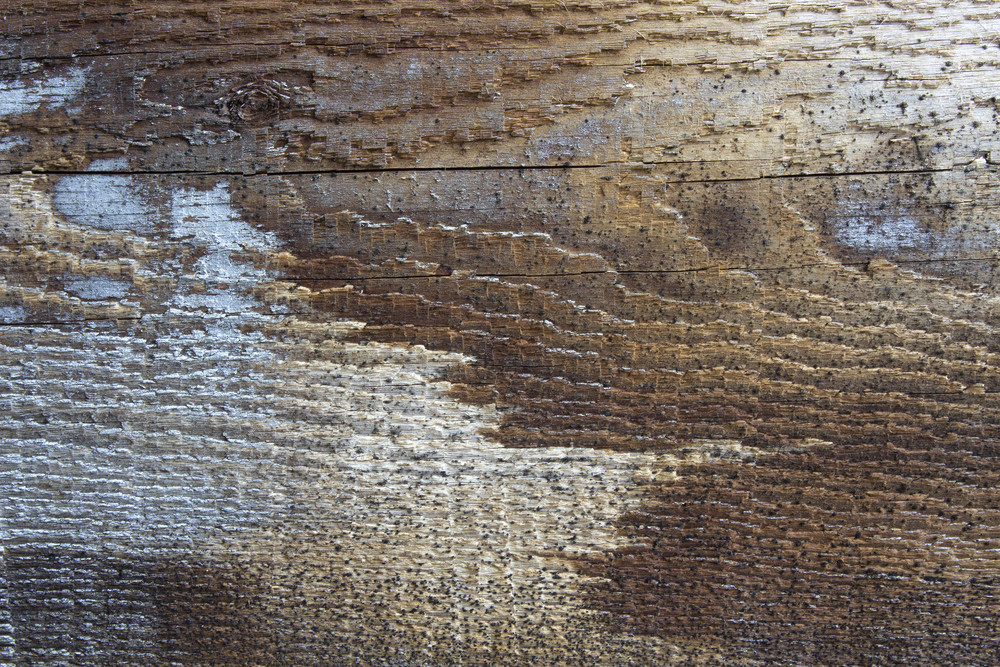 Scruffy Wood Texture
