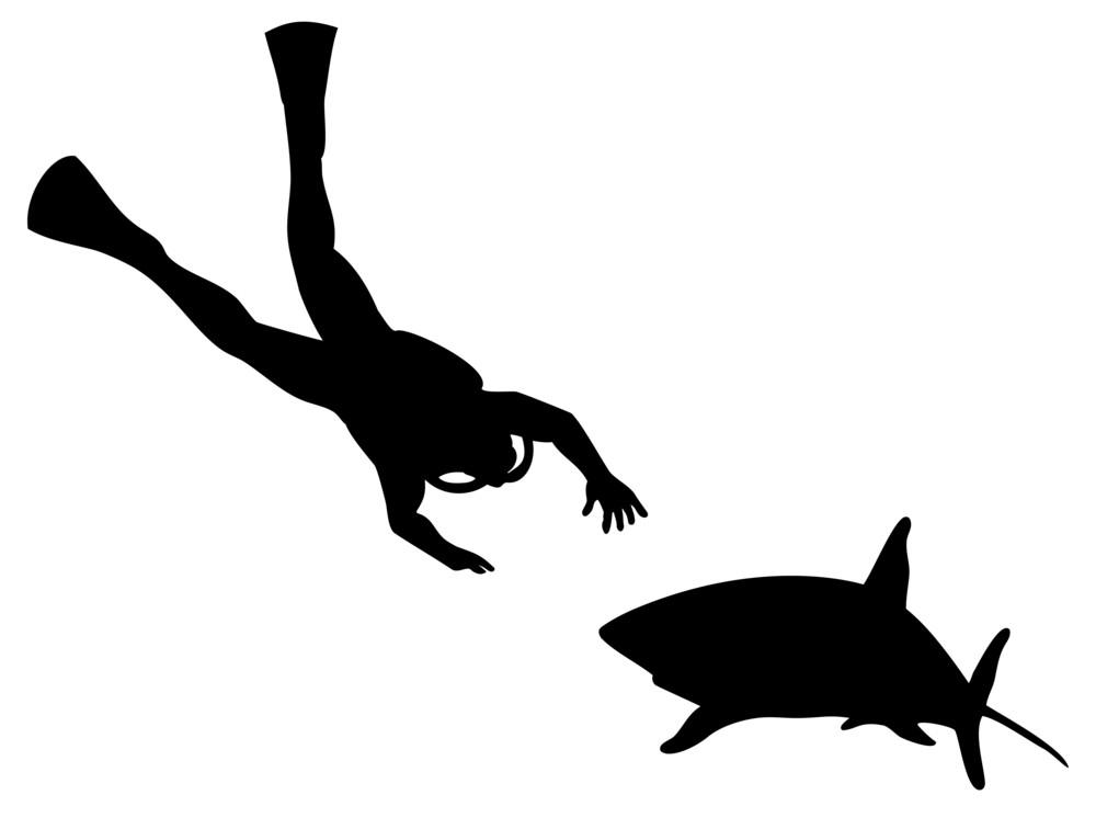 Scuba Diver And Shark Silhouette