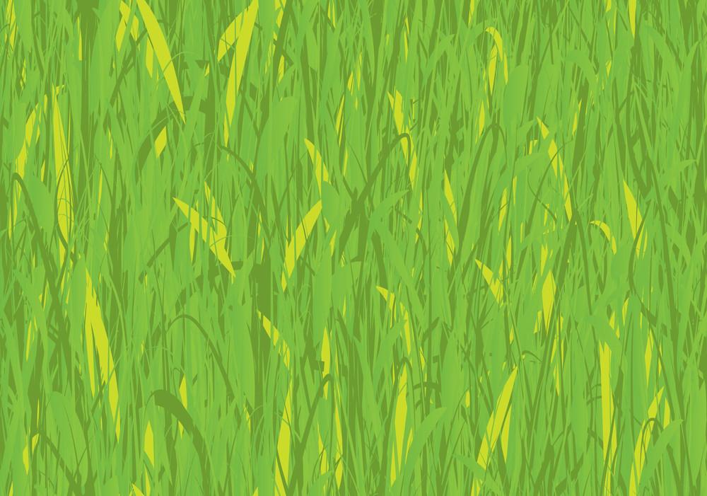 Seamless Vector Grass.