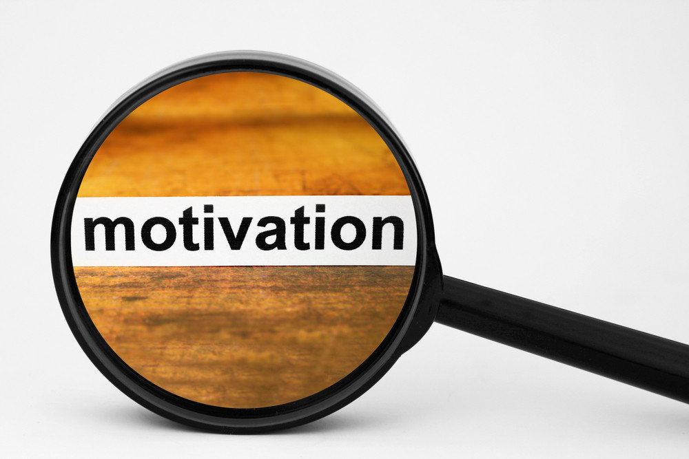 Search For Motivation