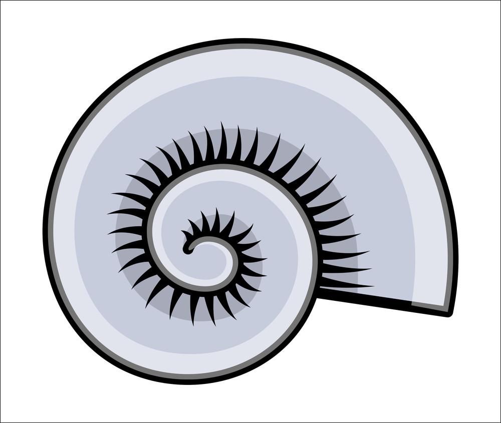 Animated Pictures Of Seashells seashell - cartoon vector illustration royalty-free stock