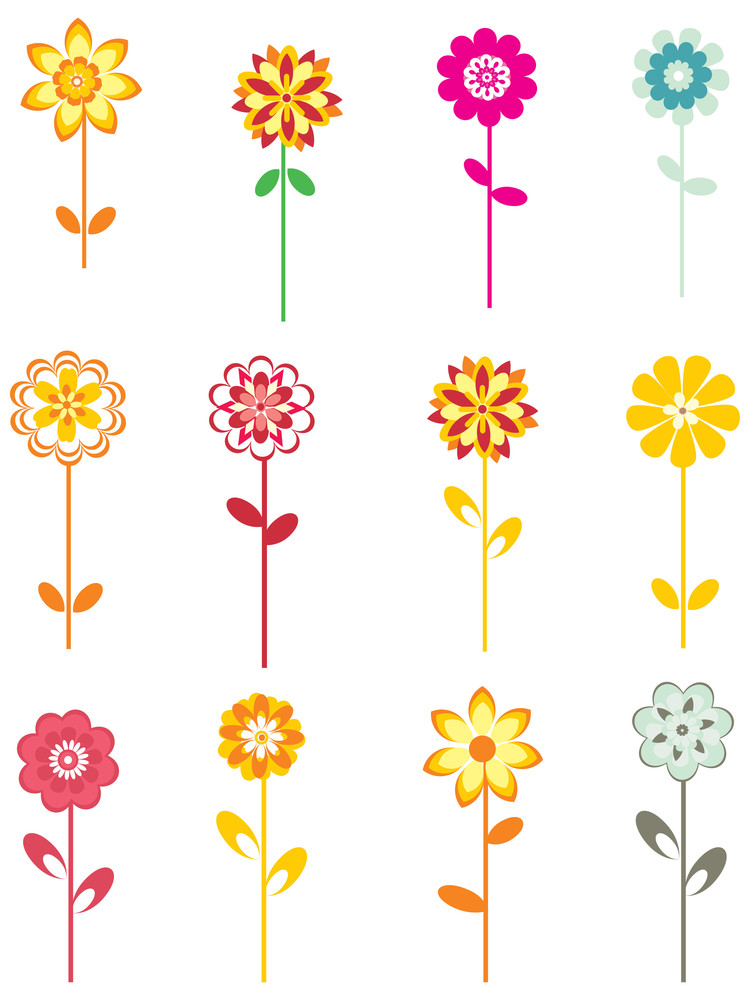 Set Of Colorful Flower