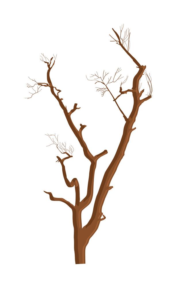 Shape Of Haunted Dead Tree