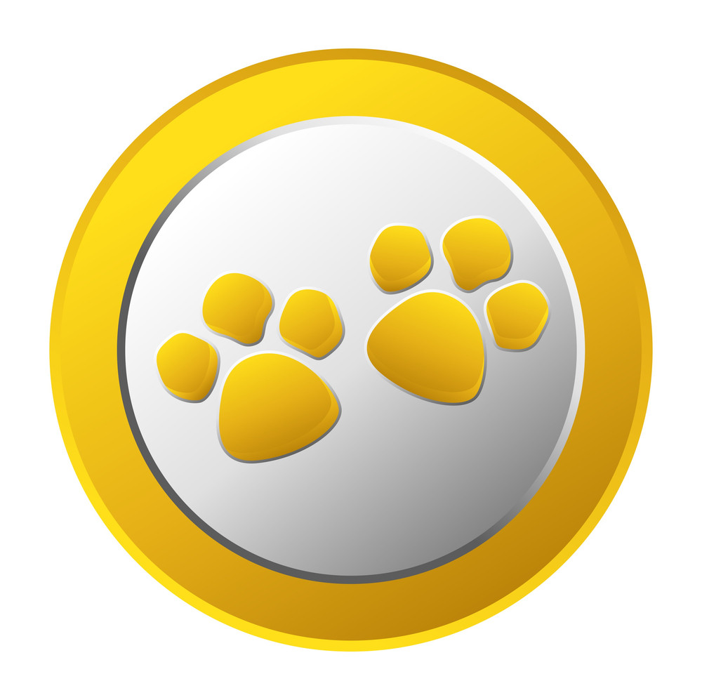 Shiny Paw Gold Coin