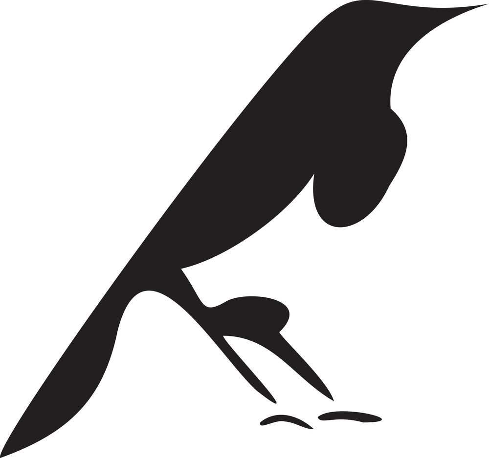 Silhouette Of A Bird.