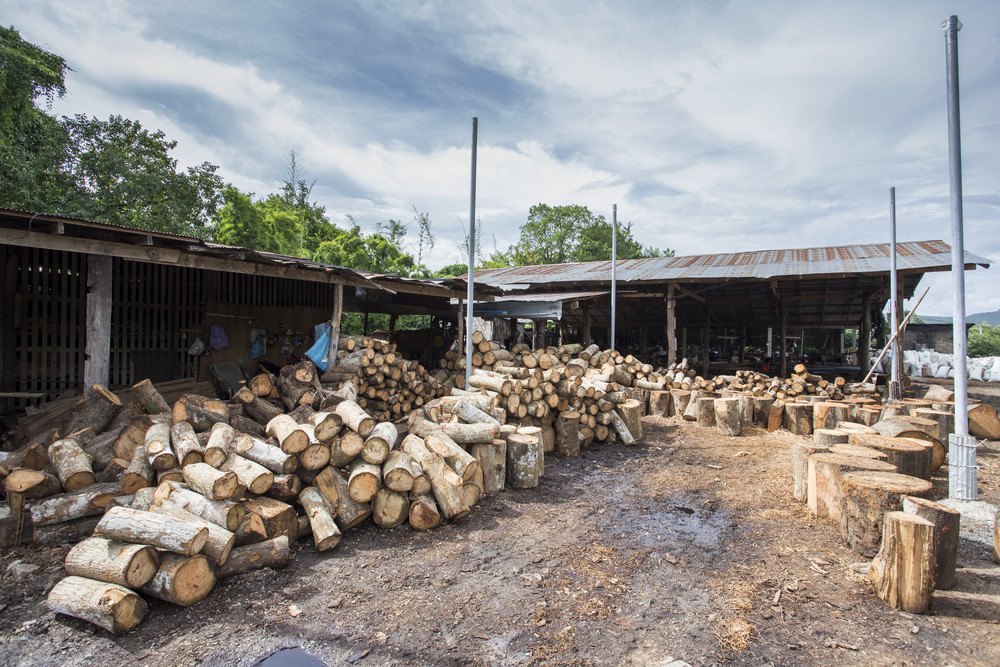 Small Asian Wood industry in Thailand