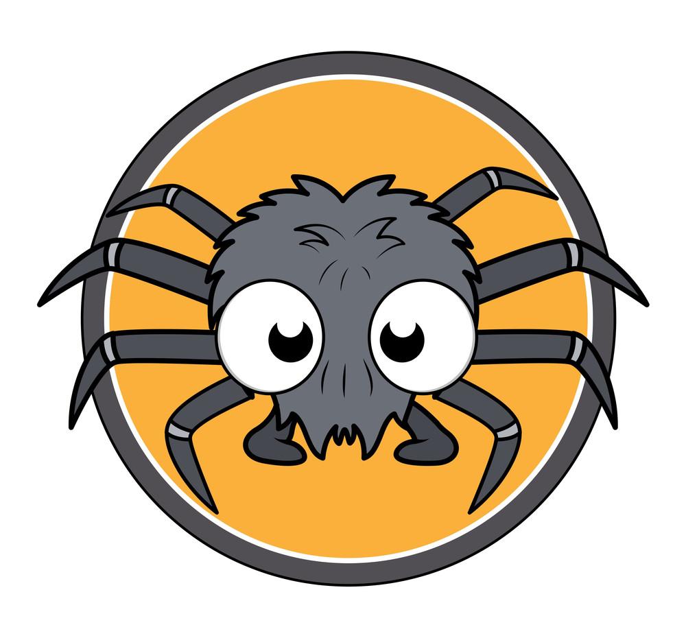 Small Spider Vector Illustration