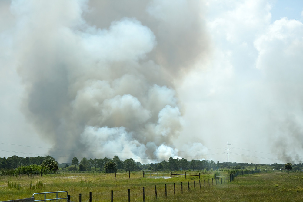 Smoke billowing forth from a large fire in a field.