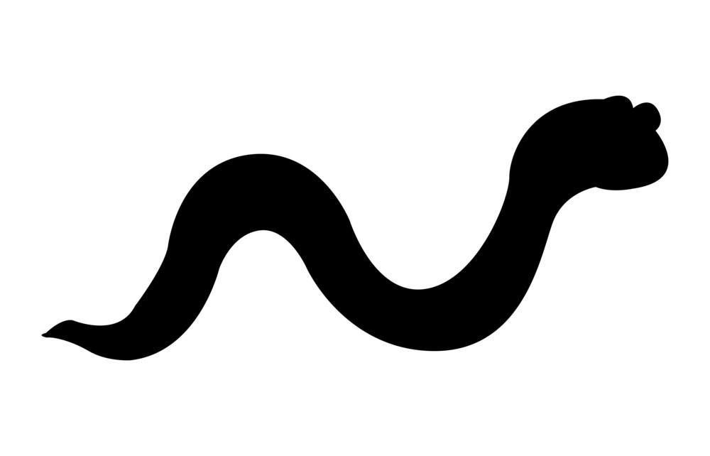 Snake Shape