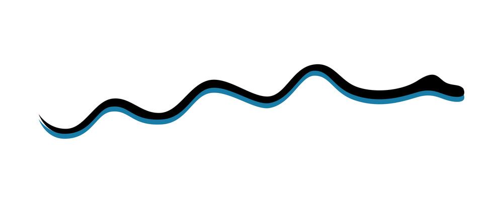 Snake Vector Shape