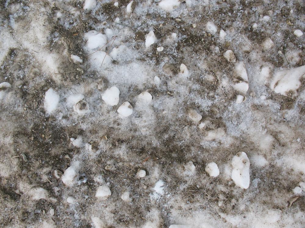 Snow 15 Texture