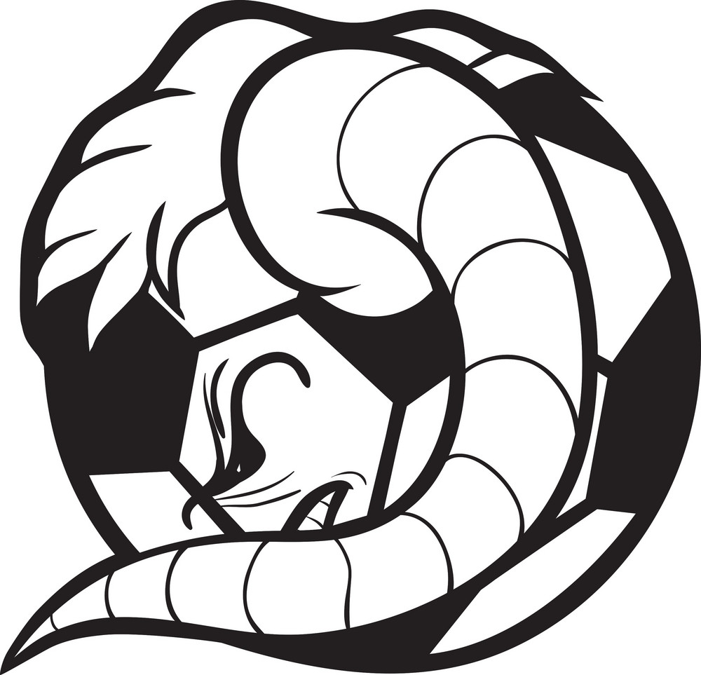 Soccer Vector Ball