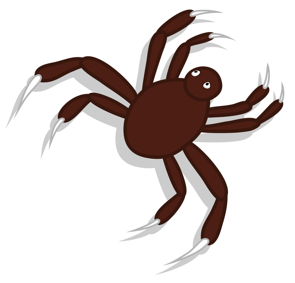 Spider Character