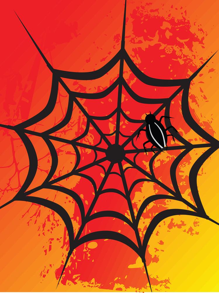 Spider Net On Orange Background