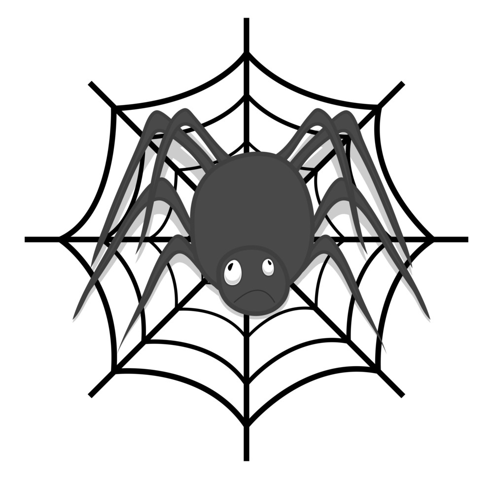 Spider With Web Vector