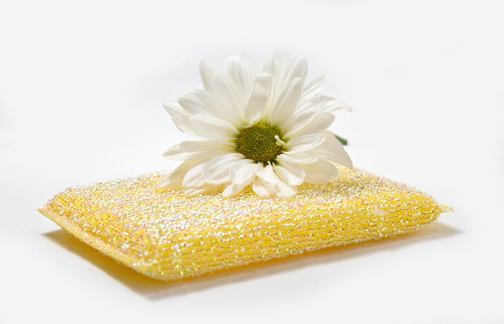 Sponge With Flower