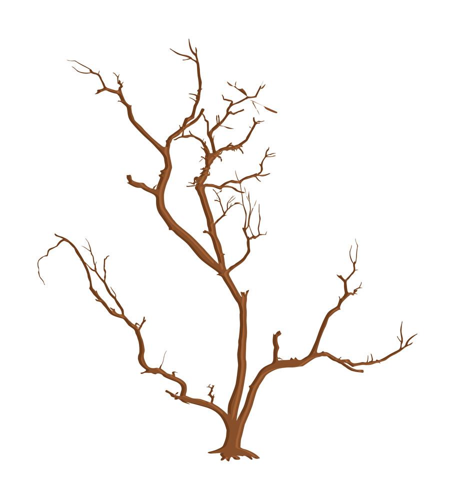 Spooky Dead Tree Branches Vector