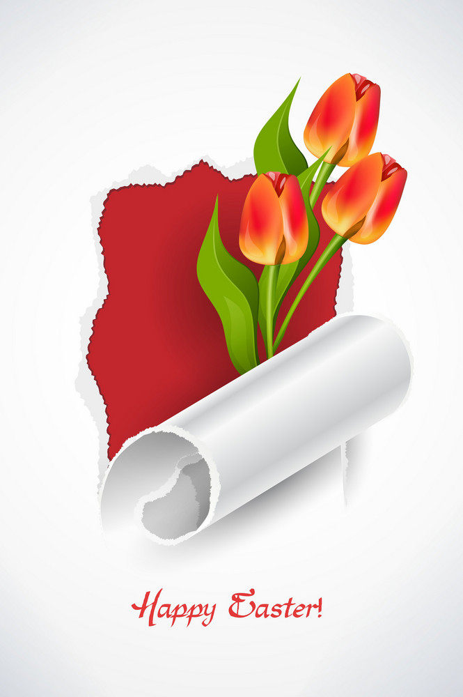 Spring Background With Tulips Face Vector Illustration
