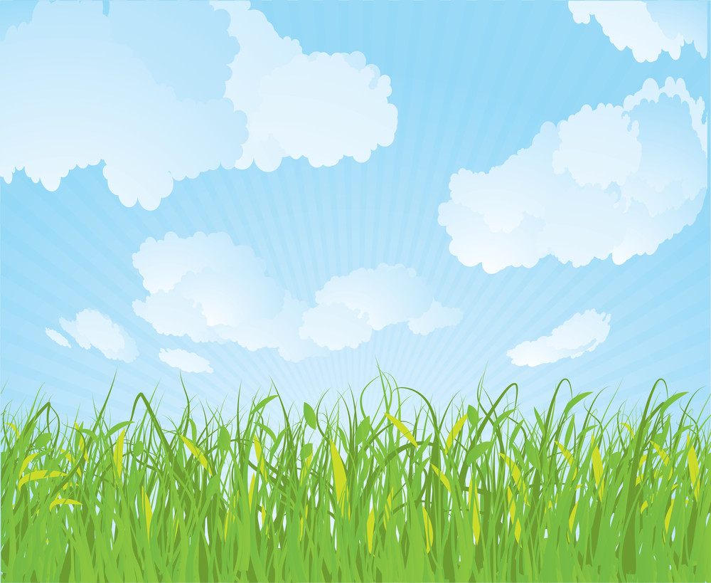 Spring Grass. Vector Background.
