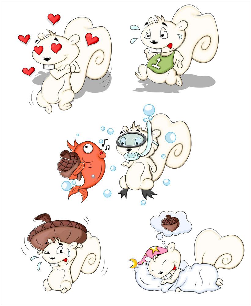 Squirrel Vector Illustrations