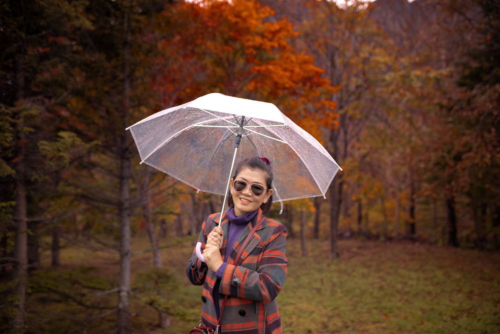 asian woman with smiling face and rain umbrella standing in red autumn leaves hokkaido japan