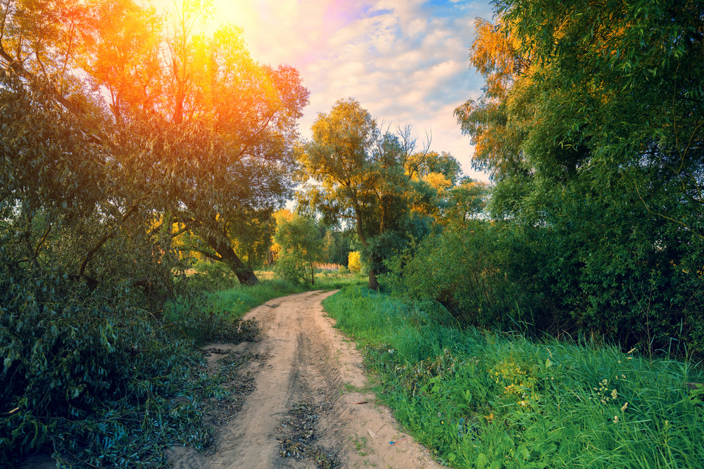 Dirt road with the blue cloudy sky at sunset. Beautiful evening nature, rural landscape