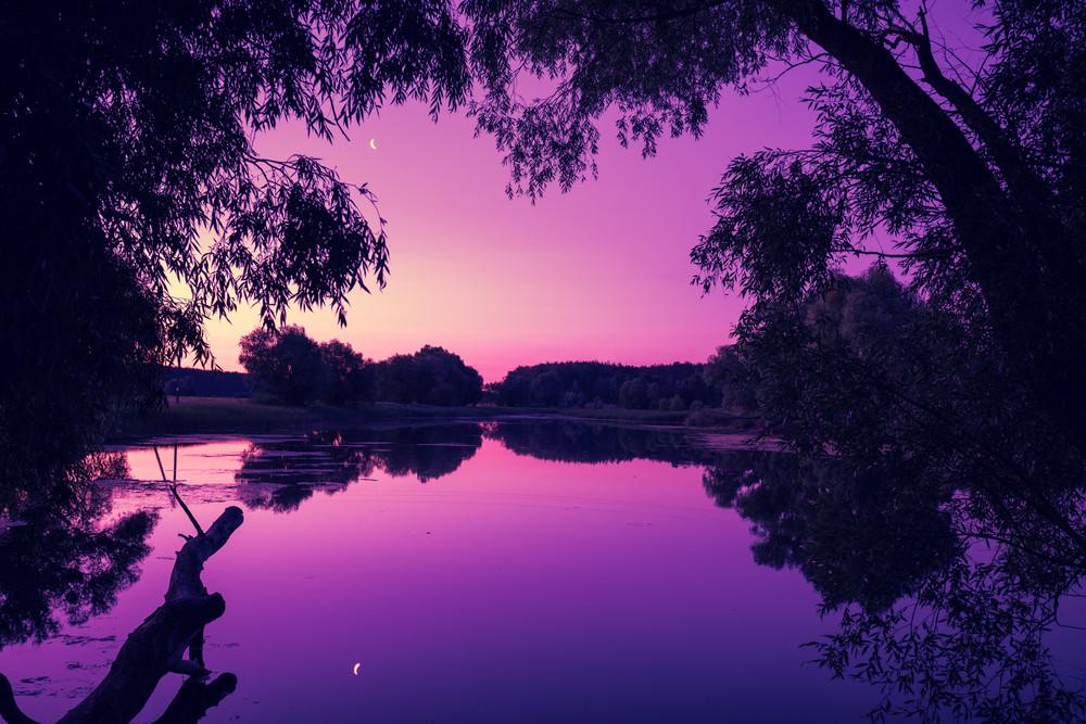 Magical purple sunrise over the lake. Misty morning, rural landscape, wilderness