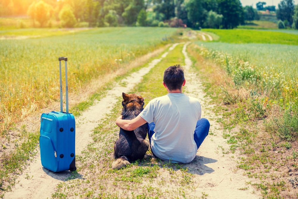 Man traveler sitting with a dog and travel bag on a dirt road in the field in summer back to the camera. Man hugging the dog and thinking about his journey