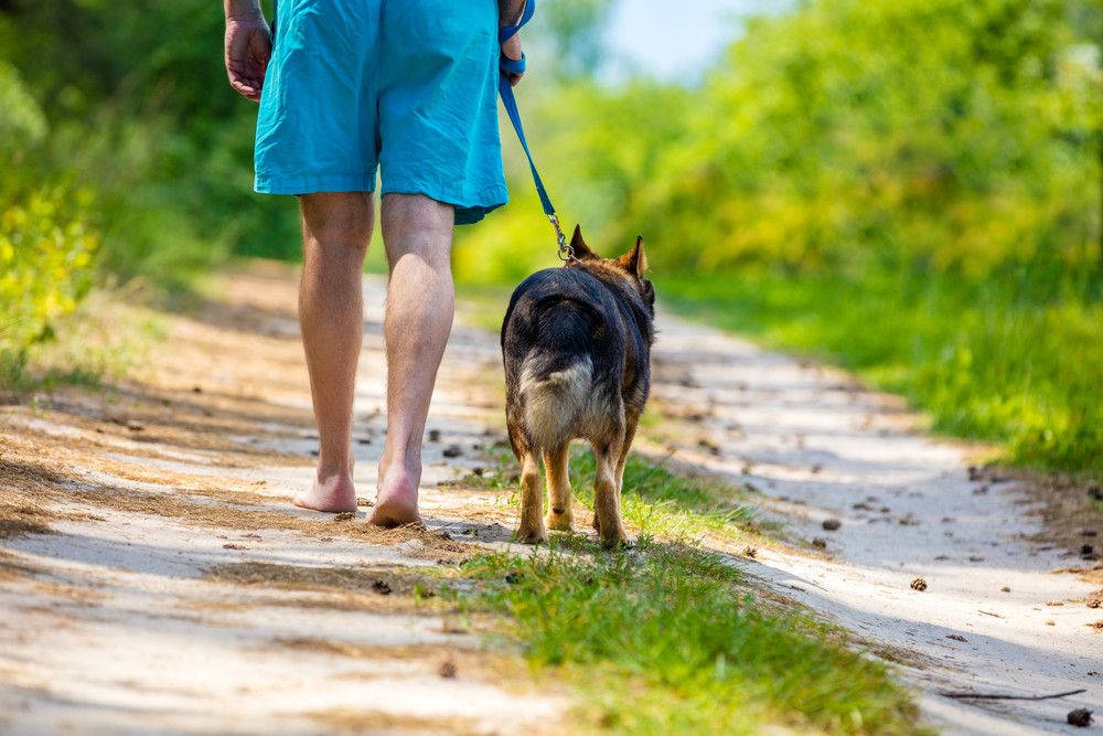 Man walking barefoot with a dog on dirt road in summer