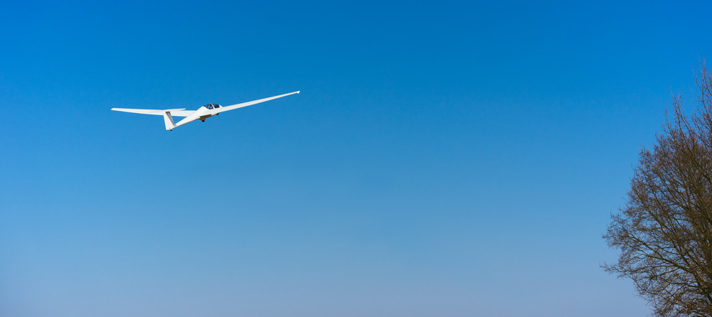 Pure white Glider in clear blue sky flying over the treetop. Concept of success, achievement of high goal