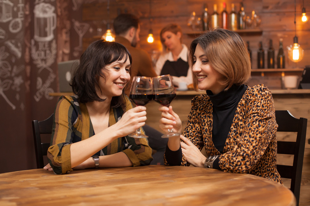 Sister clincing a glass of red wine and smiling to each other in a vintage pub. Girls having fun.