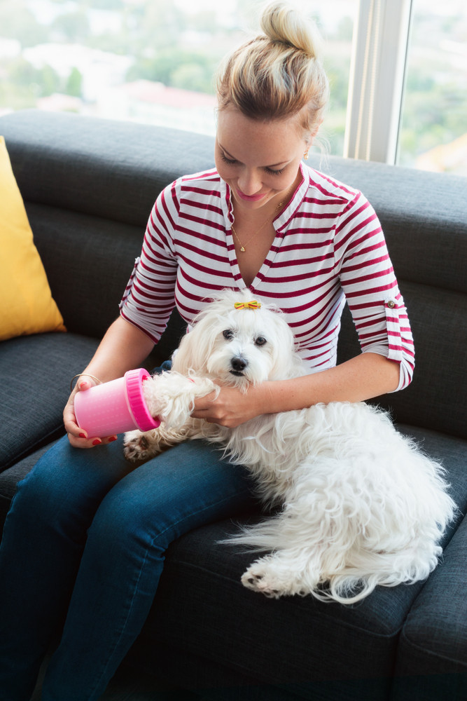 Young hispanic blonde woman using dedicated tool to clean legs and paws of her poodle dog. Pet care and hygiene