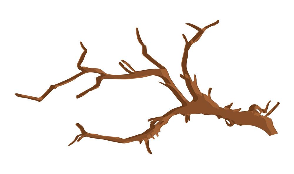 Summer Season Dead Tree