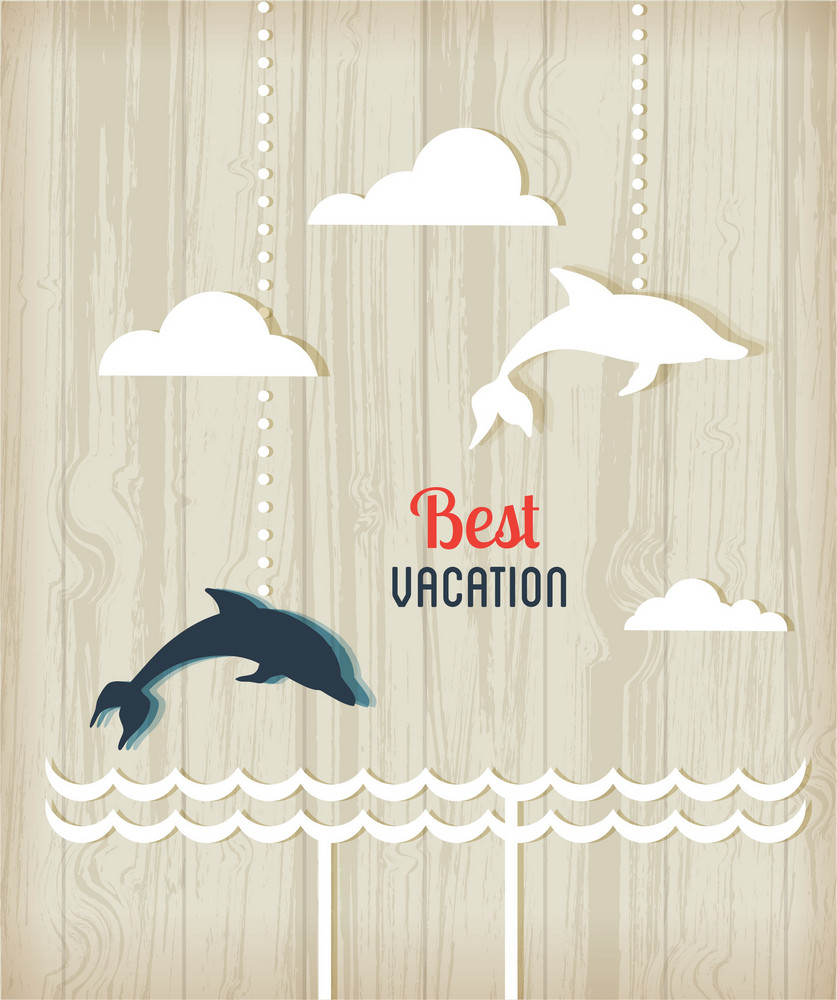 Summer Vector Illustration With Dolphins, Wood, Sticker, Sea