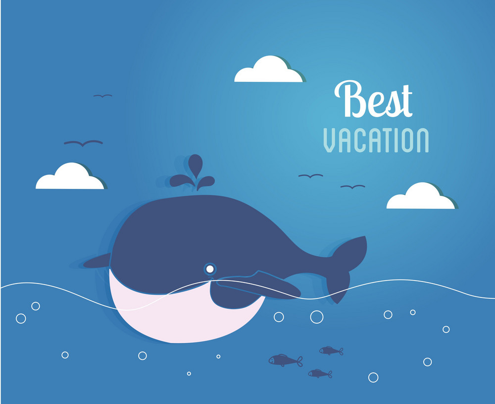 Summer Vector Illustration With Fishes, Water,whale,birds, Clouds
