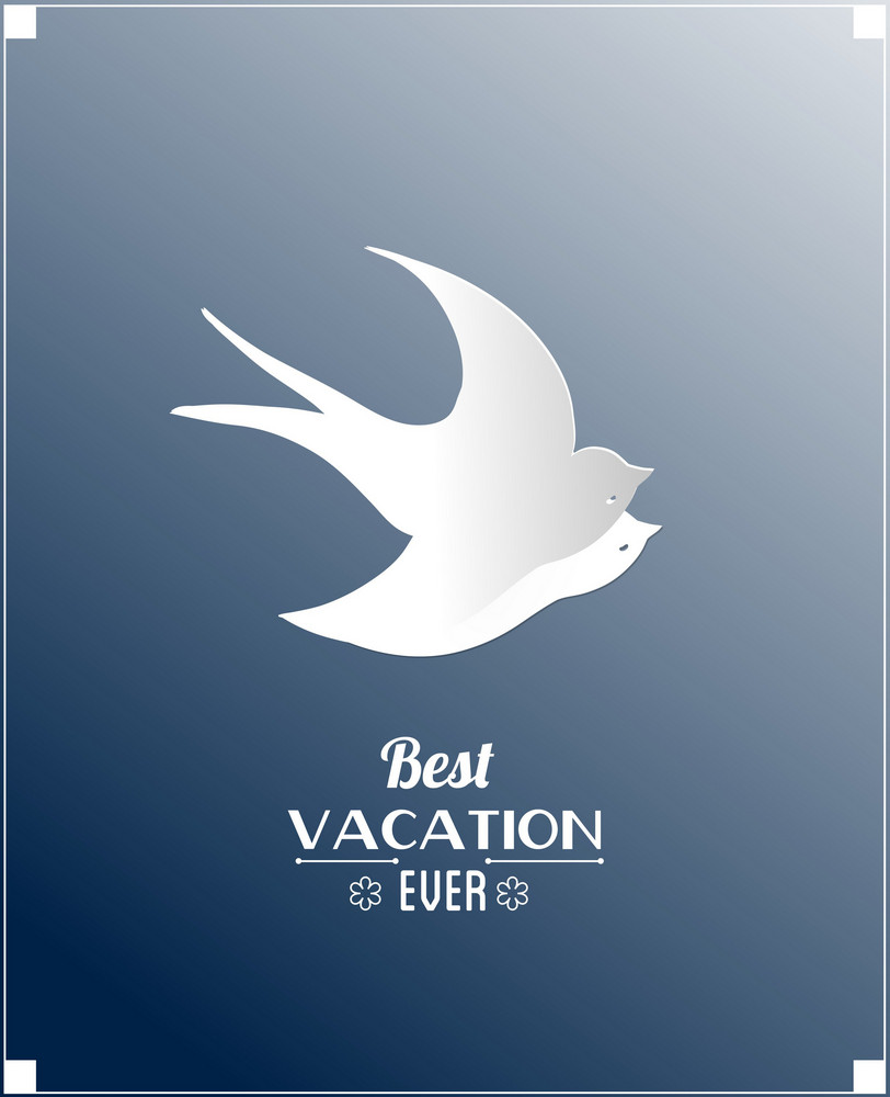 Summer Vector Illustration With Sticker Bird