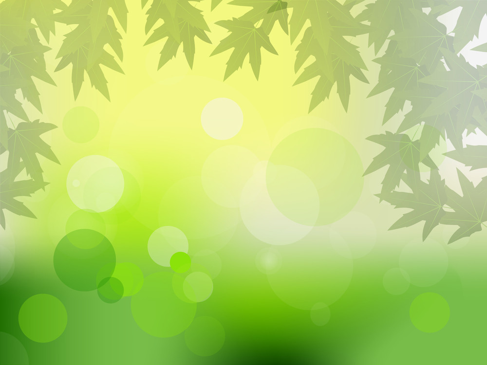 Sun Beams And Green Leaves For Vector Illustration