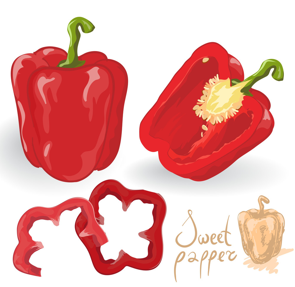 Sweet Red Peppers. Vector.
